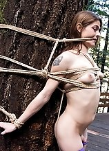 Naughty tgirl gets punished in the forest